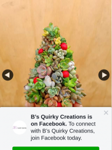 B's Quirky Creations – Win Succulent Christmas Tree