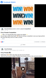 Furry Friends – Win 1 of 3 Dog-Friendly Prizes Valued Over $2500 (prize valued at $2,300)