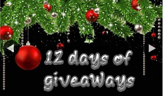 Jump for Joy Bouncing Castles – Win 12 Days of Christmas Giveaway