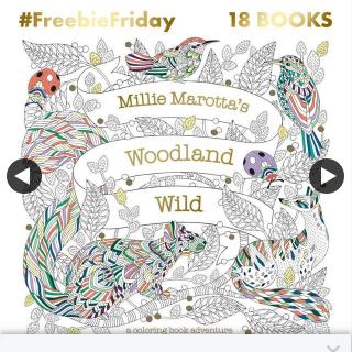 QBD Books – Win a Copy of Millie Marotta's Woodland Wild Colouring Book