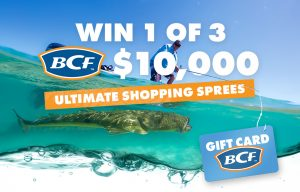 Network 10 – BCF I'm a Celeb Get Me Out of Here – Win 1 of 3 BCF vouchers valued at $10,000 each