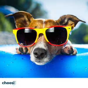 Choosi – Win a $3,000 eftpos gift card that can be used at any store Australia-wide