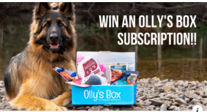 Olly's Box – win a 6-month Olly's Box Subscription