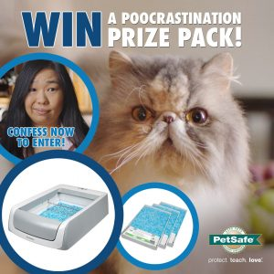 PetSafe Australia – Win the ultimate prize package