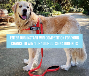 Dog Friendly – Win 1 of 50 Signature kits for your furry friends