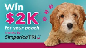 Nova Sydney – Win $2,000 cash PLUS a Simparica Trio prize pack valued at $300 for your pooch